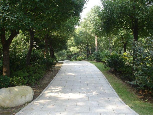 Лесной Парк Комсомола (共青森林公园 Gongqing Senlin Gongyuan)